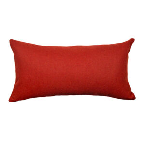 coussin cale dos rouge